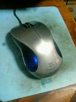 新しいネズミさん