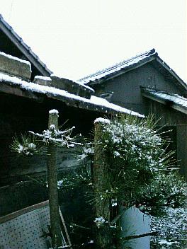 初雪、初冠雪